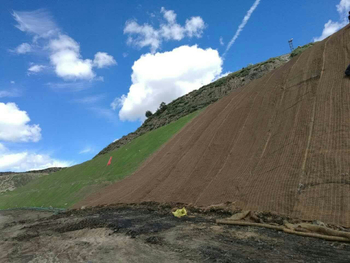 Maintenance of slope greening